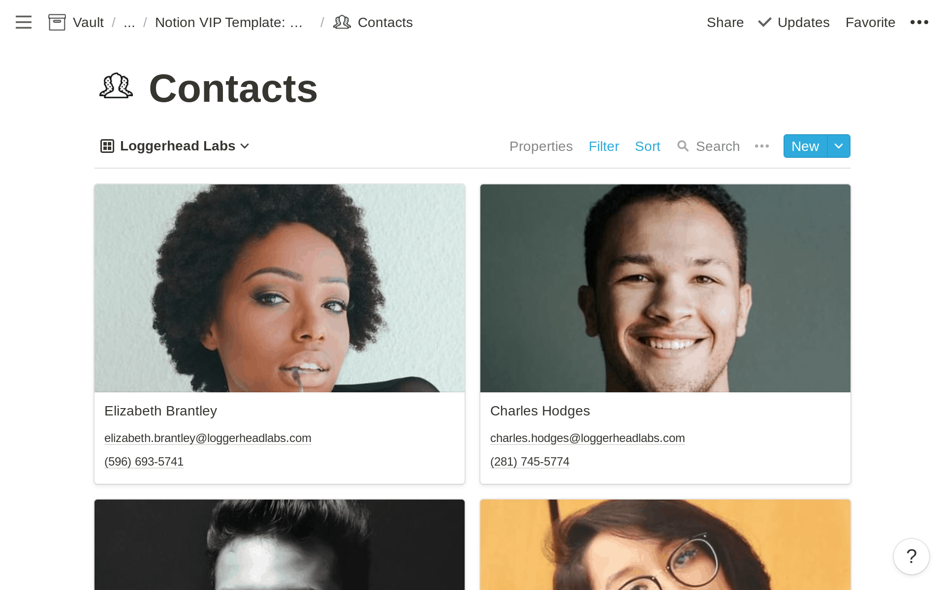 Notion Contact Management: Contact Gallery